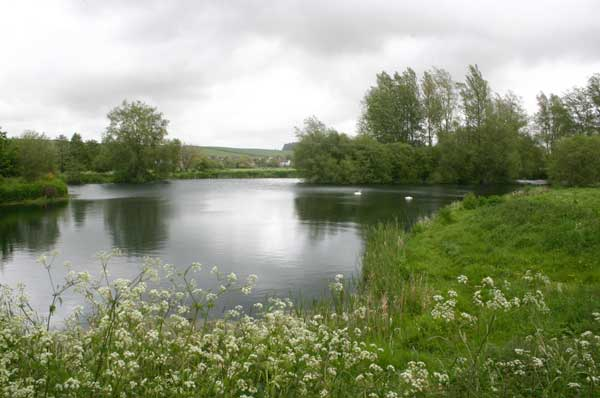Meadow Trout Fishing Lake, Tolpuddle, Dorset - photo