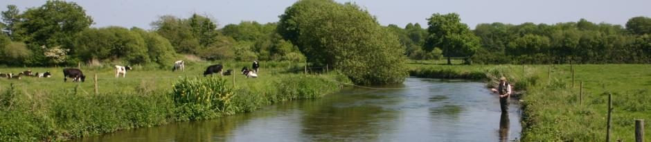 Dorset Fly Fishing