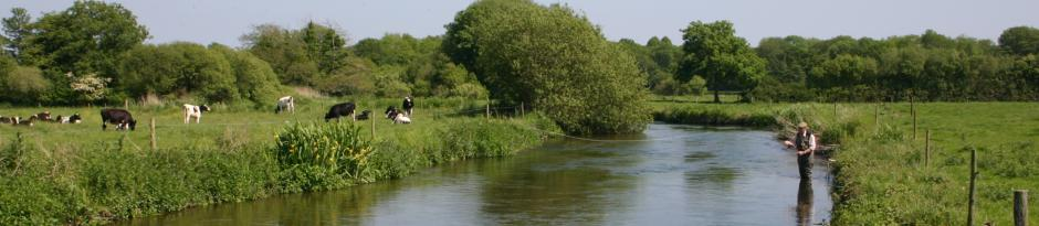 dorset-fly-fishing1