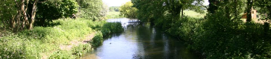 dorset-fly-fishing5