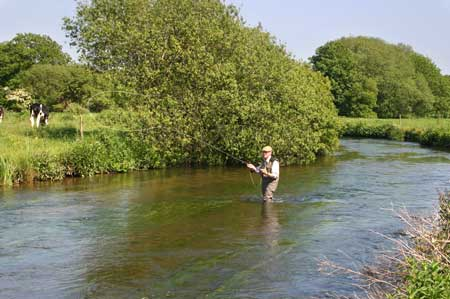 Dorset Chalk Stream Fly Fishing, River Frome, Photo